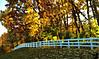 October 29, 2009 - Picket fences