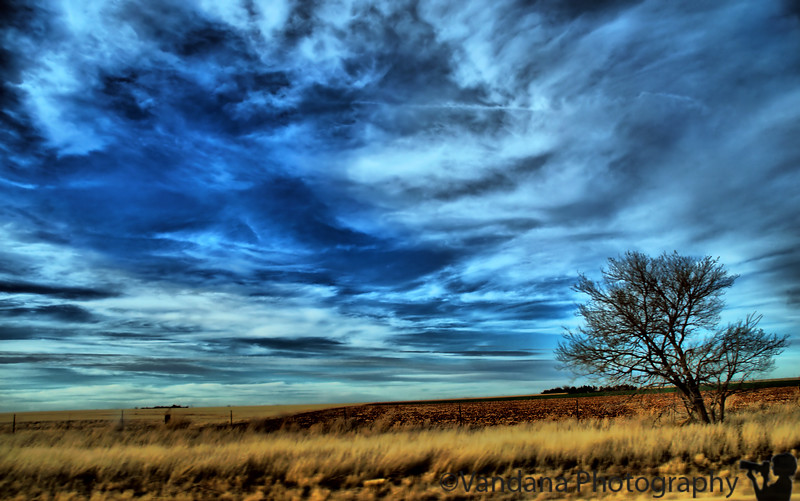 March 16, 2009 - blue skies