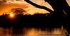 April 24, 2009 - Sunset on the lake, Ned Houk Memorial Park, Clovis