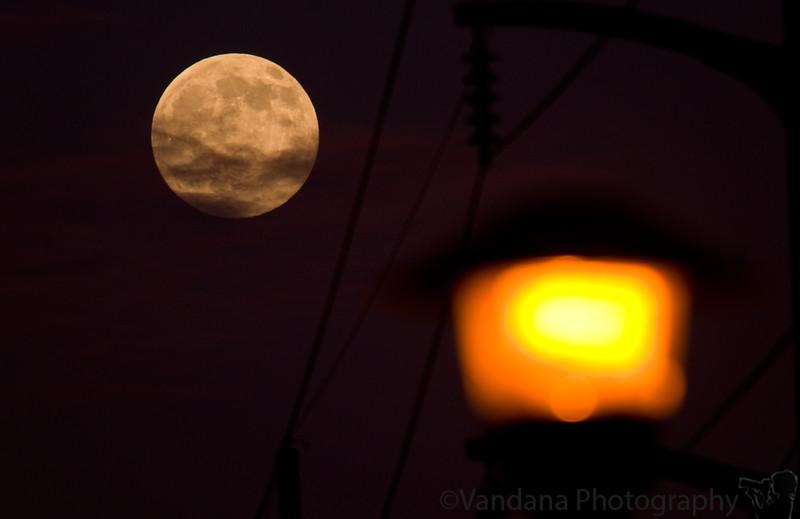 December 1, 2009 - Moonlight