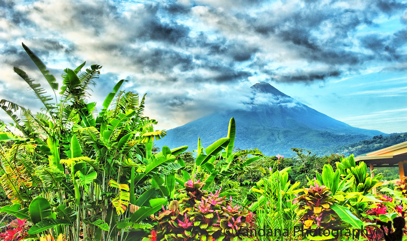 """December 18, 2010 - The Arenal volcano !  We hiked the gruelling Cerro Chato hike followed by the trail down to the La Fortuna waterfall & up.  After a rice-and-beans traditional breakfast, we started the hike at 8am sharp and we were dropped off at our hotel at 5pm, completely beat & dead/dying/lifeless. Skipped lunch, skipped dinner. Took 5-6 tylenols each, had a bunch of guavas, hit the bed & woke up a half hour ago at 7am. Quadriceps in no position to walk, very, very tired.  About the hike itself : it is the toughest hike we've done so far in our life. And that's saying something. We've scaled Mt. Marcy, Mt. Algonquin, Mt. Katahdin, done the Canyonlands trail, so many other brutal ones. Cerro Chato is on a whole different plane. It starts out quite flat & benign with lots of birdwatching opps. Then suddenly the hike takes a 45-60 incline through the rainforest. Its not really a hike, more like a climb. You need both your hands & you land on your palms & butt most of the time. Its very slippery due to the rainswept rocks & terrain. And of course its the tropics, so you can step on a camourflaged reptile curled up along the path & not know it.  Yes, we spotted a fer-de-lance!!! Will post a picture soon. <a href=""""http://en.wikipedia.org/wiki/Bothrops_asper"""">They are the most venomous snakes in Costa Rica.</a> Cause the most snake fatalities in the country. I'd have been okay if we spotted it far away on a tree or something. It was literally curled up on our trail, so we were less than 1 feet from it. And I'd have stepped on it if I hadn't been paying attention! Close call. We took pictures so we could show other hikers on our trail so they are careful not to step on it.  Cerro Chato is a dormant volcano & the hike takes up right up and into the crater of the volcano. From here, we can look straight at the Arenal volcano, which is an active volcano & right across you. This is possibly the closest you can get to Arenal. One could climb the Arenal itself, though that"""