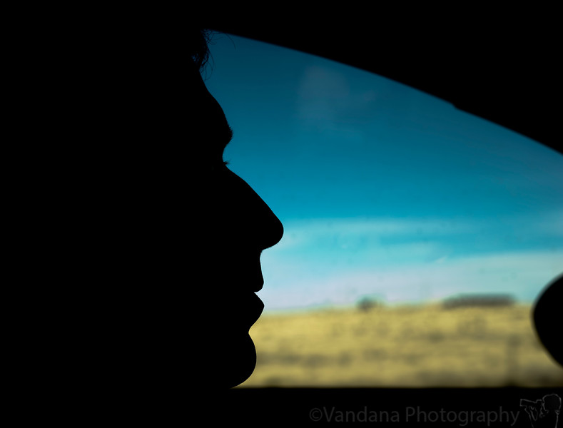 January 31, 2010 - The silhouetted driver