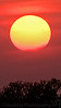 April 22, 2010. No, not Clovis! Sunset at Rockford, IL, @7:30 pm, no PS.<br /> <br /> Happy Earth day !