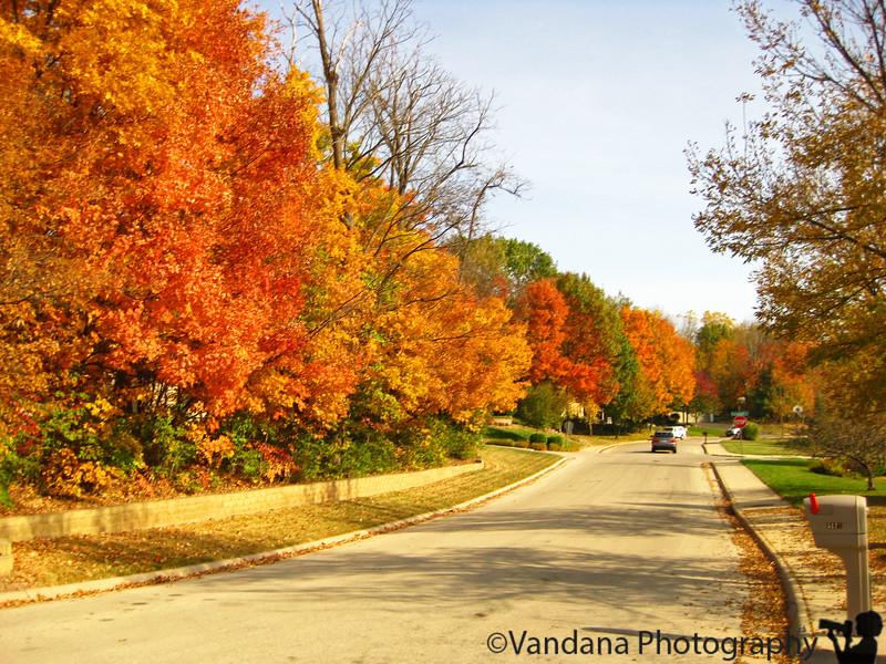 October 28, 2010 - Walk thru the colors