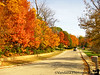 October 28, 2010 - Walk thru the colors