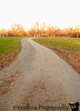 November 5, 2010 - the road ahead