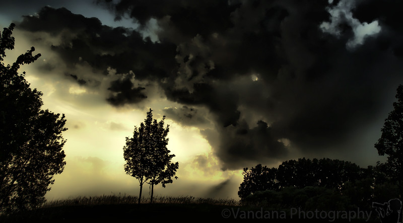 June 25, 2010 - Darkness visible