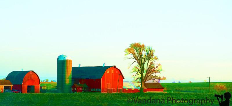 November 12, 2010 - the red barn