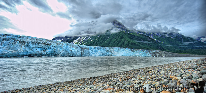 July 11, 2010. Childs Glacier<br /> At the end of a 40 mile pot-holed gravel road that is the Copper River Highway lies the magnificent Childs Glacier. It is the largest tidewater glacier that can be seen up close, right across that glacial stream.  On the way to Childs, we spotted two black bear that darted out on the highway. One was quite large and gave us pause, but after a few deep breaths we decided to continue on to the glacier nevertheless.<br /> <br /> Cordova itself is a tiny fishing town, and the trip along the unmaintained Copper River Highway feels like Tintin exploring unmarked forests and mountain streams in South America. The road is flanked by incredible mountain ranges and streams, many bald eagles on naked treetops. Childs Glacier arrives quite suddenly and the first view is spectacular, takes your breath away. We also drove on the Million Dollar Bridge nearby where we spotted our second bear.