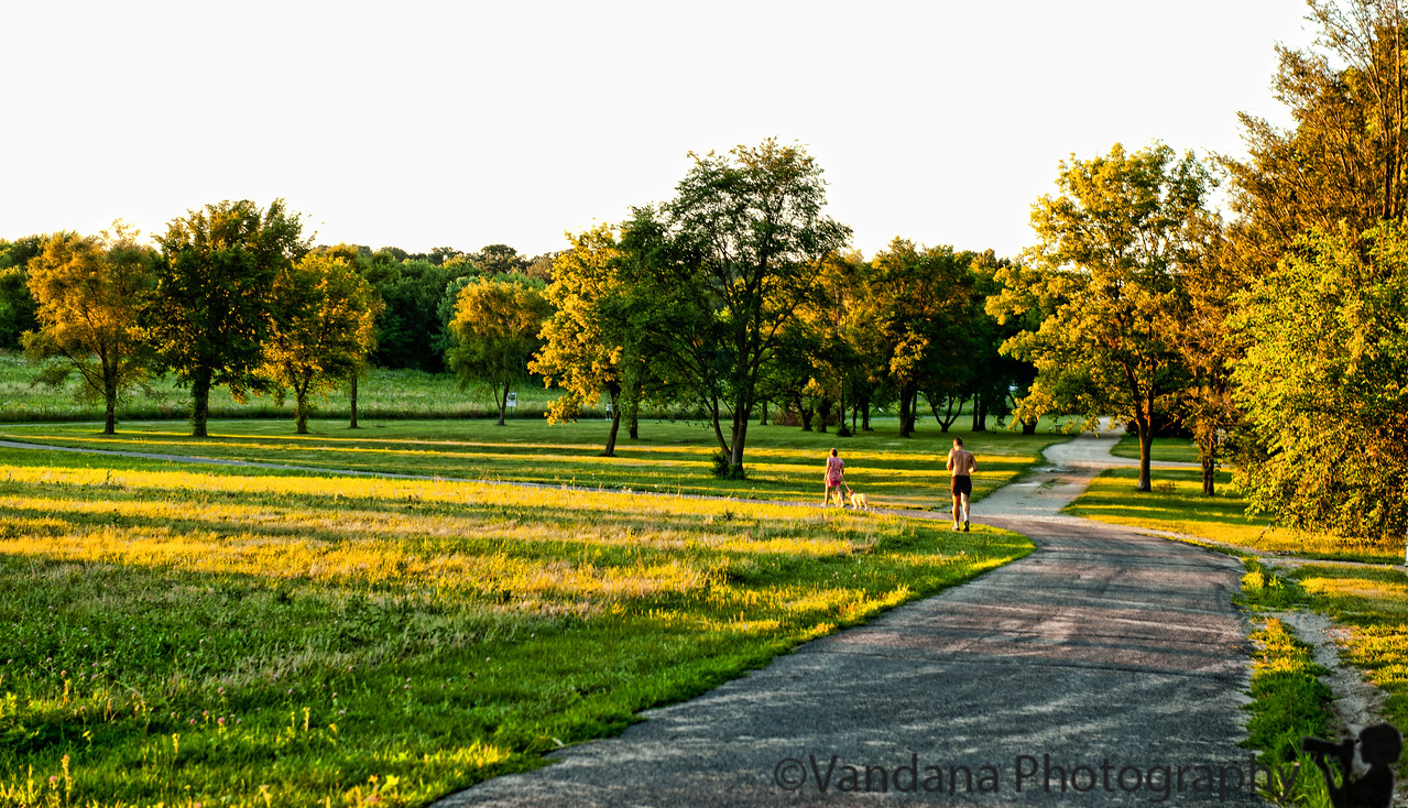 August 8, 2011 - a walk in the park