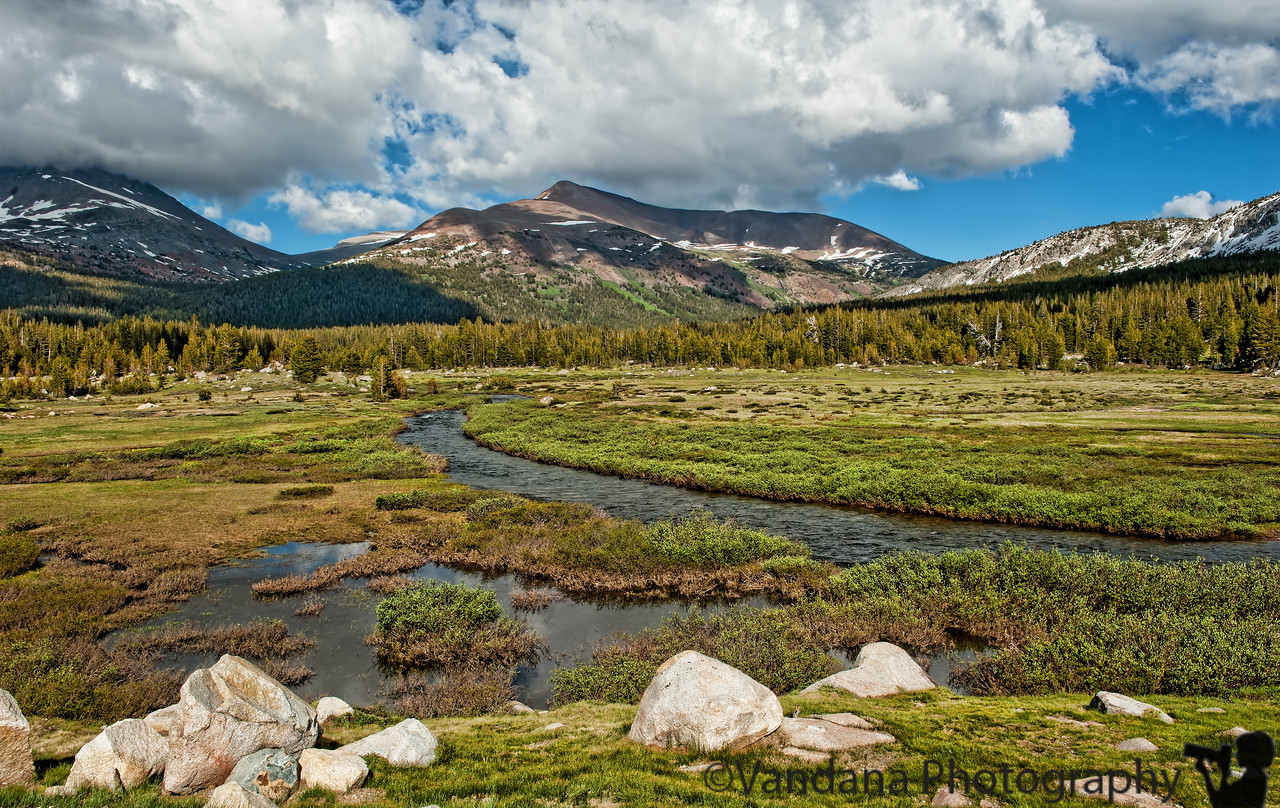 July 18, 2011 - the Sierra Mountains at Tioga Pass