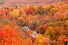 October 10, 2011 - Burst of color, in Blue Ridge Parkway, NC <br /> yes, real fall colors , no photoshop :) ! almost peak colors towards Cherokee, but 2 weeks to go towards Asheville.<br /> many photos to transfer and process in the next days to come !