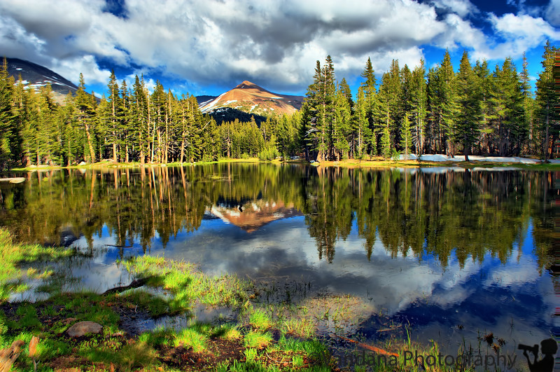 July 17, 2011 - Reflections on a alpine lake on Tioga pass rd, Yosemite National Park