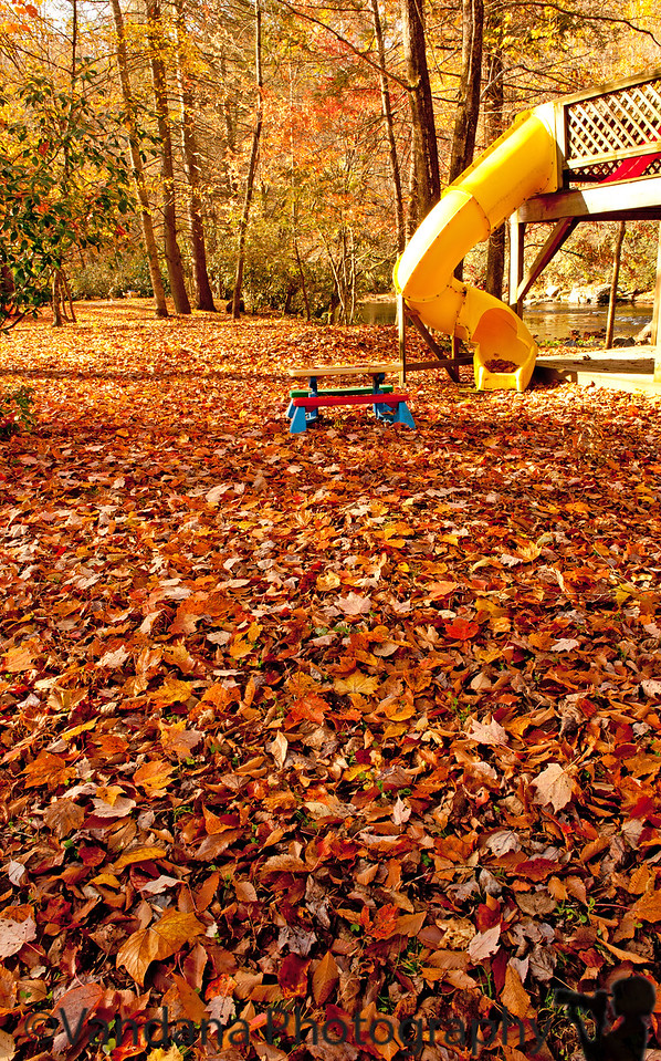 October 30, 2011 - Fall near our cottage, at Cherokee, NC