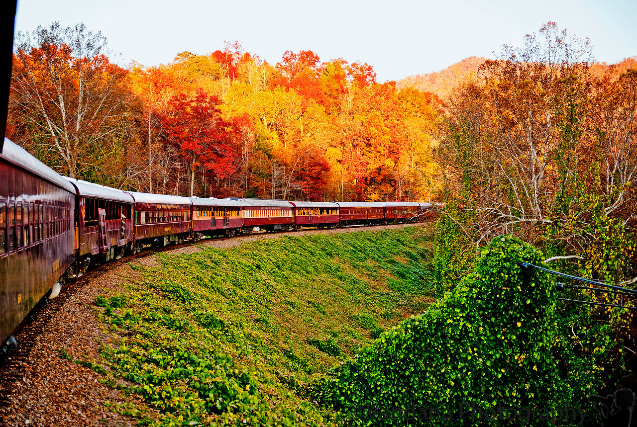 November 9, 2011. The Smoky Mountain Railroad - photo taken by leaning out the window into the cold breeze !