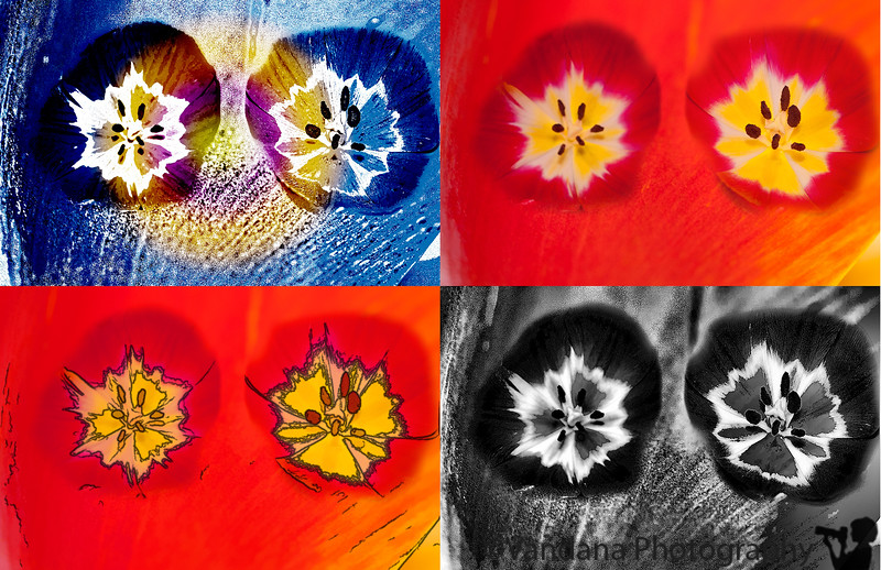 March 2, 2011 - Warhol art