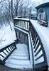 Jan 18, 2011 - snow day