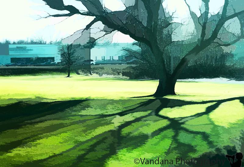 Feb 19, 2011 - shadows in green