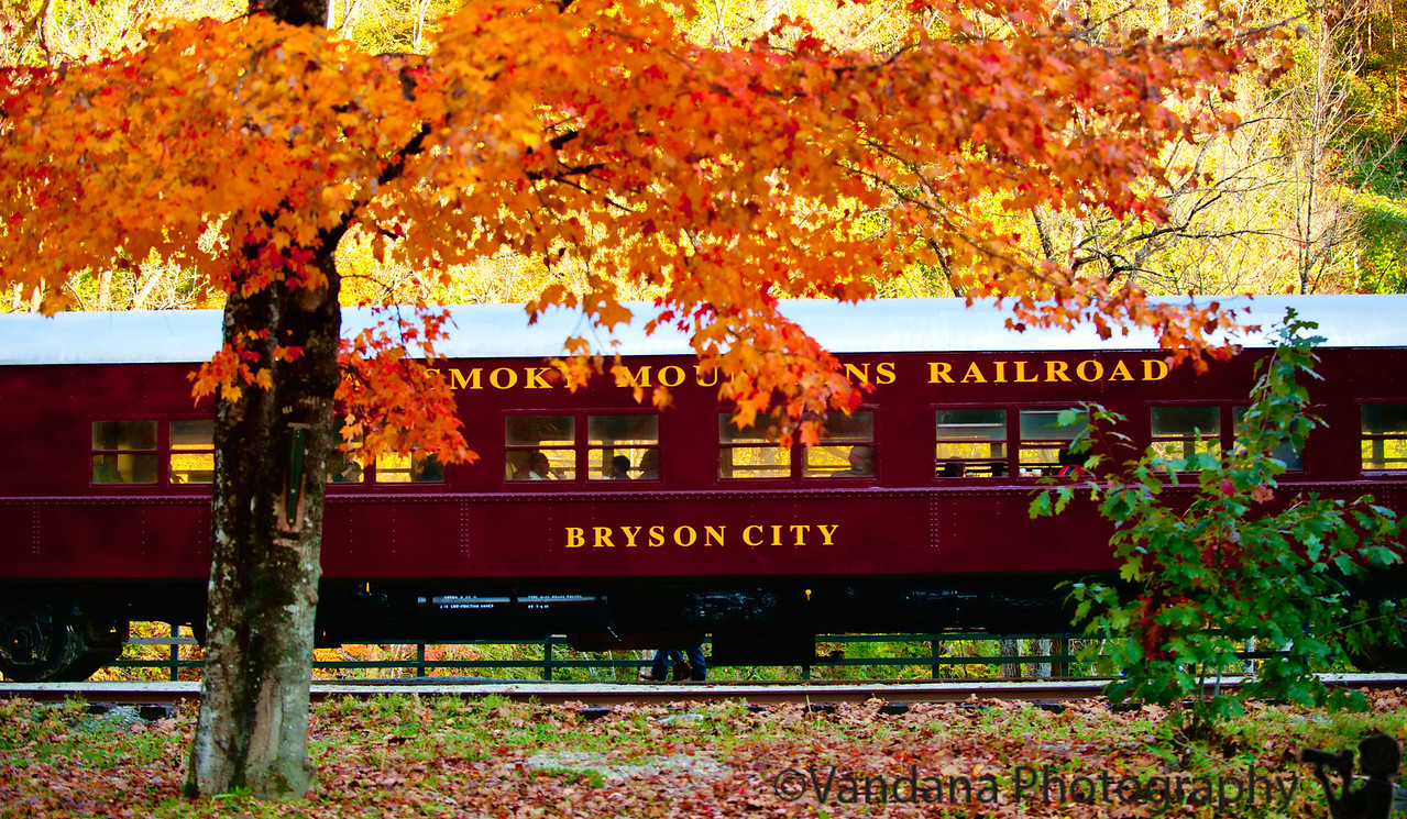 November 2, 2011. Riding the Great Smoky Mountains Railroad!<br /> Boarded the Great Smoky Mountain Railroad at Bryson City for a 4.5 hour trip through the Smokies, with a brief stopover at Nantahala Outdoor Center, where we watched whitewater rafting in progress. They give you food, blankets, cookies, beer and a lot of American civil war history on the train. The gorgeous fall scenery is a bonus. We were in an open gondola, so we could lean through the windows and take pictures to our hearts content. Awesome experience, highly recommended. gsmr.com FTW!