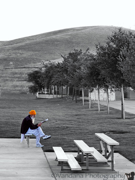 "September 5, 2012 - Peace  in memory of the victims of the <a href=""http://www.washingtonpost.com/blogs/guest-voices/post/sikh-temple-shooting-one-month-later/2012/09/05/16e2256e-f77f-11e1-8398-0327ab83ab91_blog.html"">Sikh temple shooting in Milwaukee, WI<a/> one month back.  Such shocking tragedy to such a peaceful community."