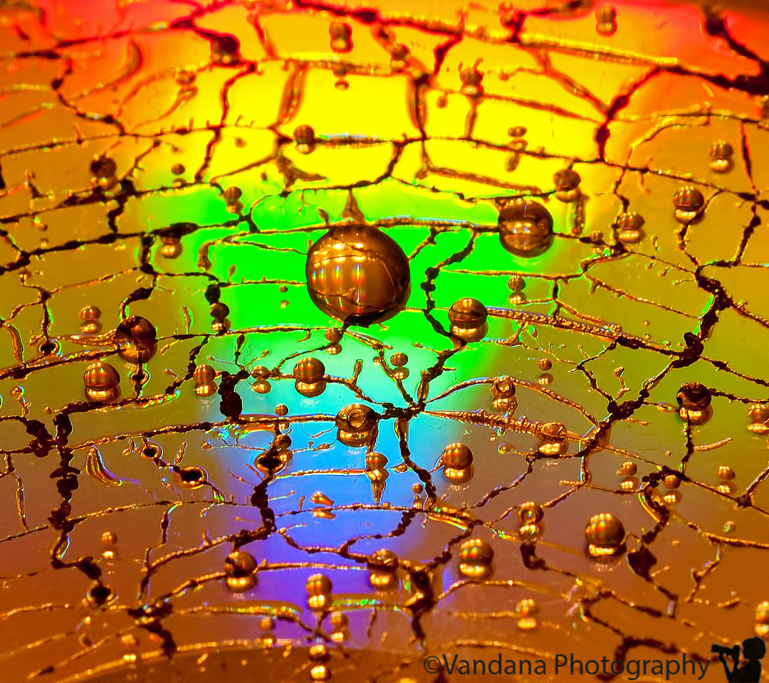 "February 3, 2012 - Drops on a microwaved CD  I had picked up the habit of microwaving CDs back in 2008 for the dailies - <a href=""http://www.vandanaphotography.com/Photography/Photo-a-day/Daily-Photos-2008/4093660_Bh3TR8#!i=263528069&k=itNdz"">shot here</a> but I hear it is the in thing these days ;) !"