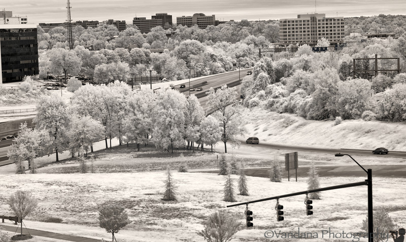 July 16, 2012 - A winter wonderland ?! <br /> <br /> Charlotte in Infrared - taken with IR-converted Nikon D80. No post-processing other than curves/crop.