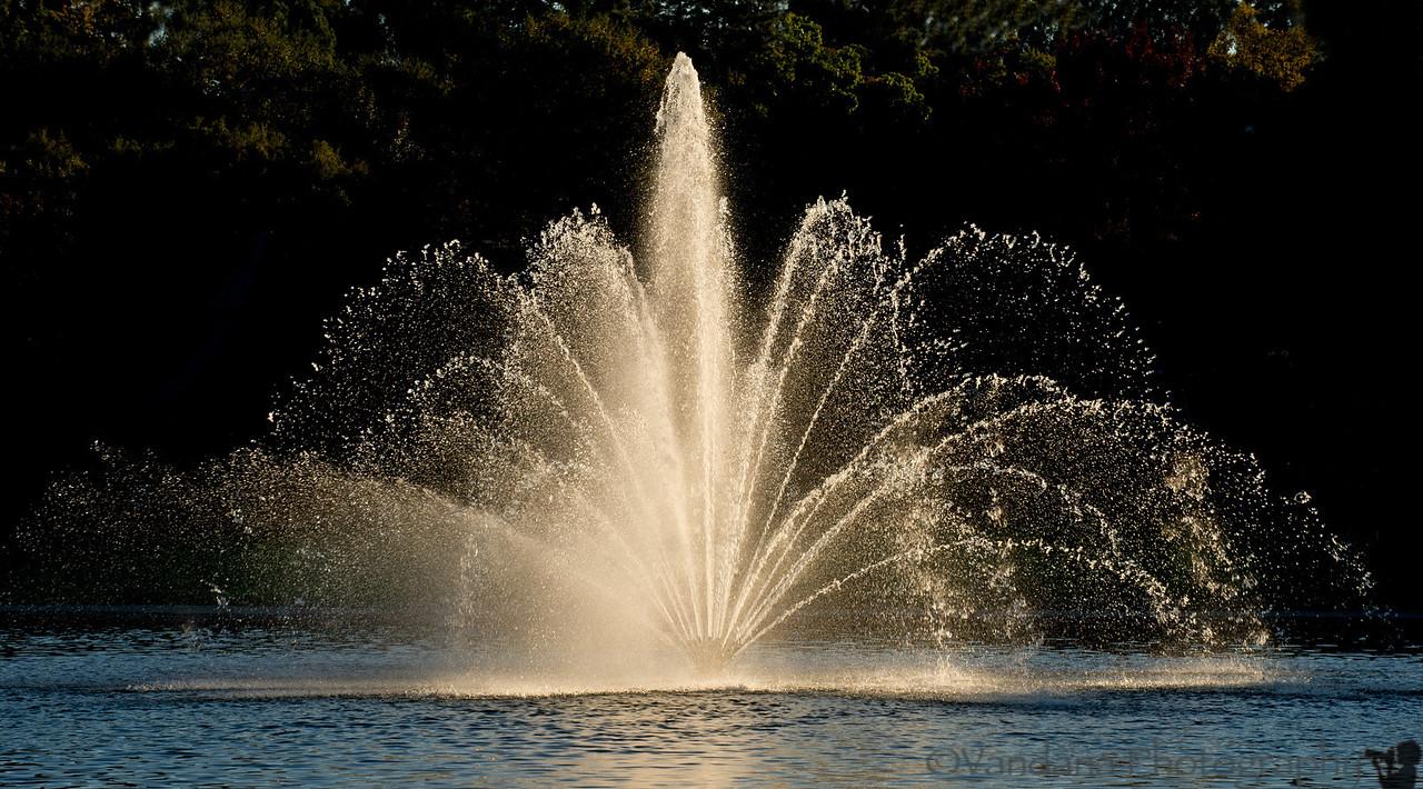 November 9, 2012 - Splash !