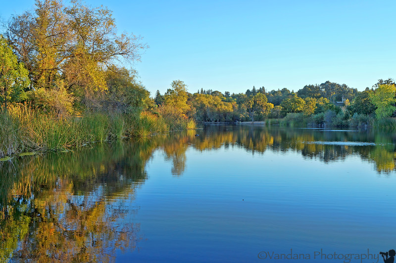 October 12, 2012 - Reflections, Heather Farm Park, Walnut Creek