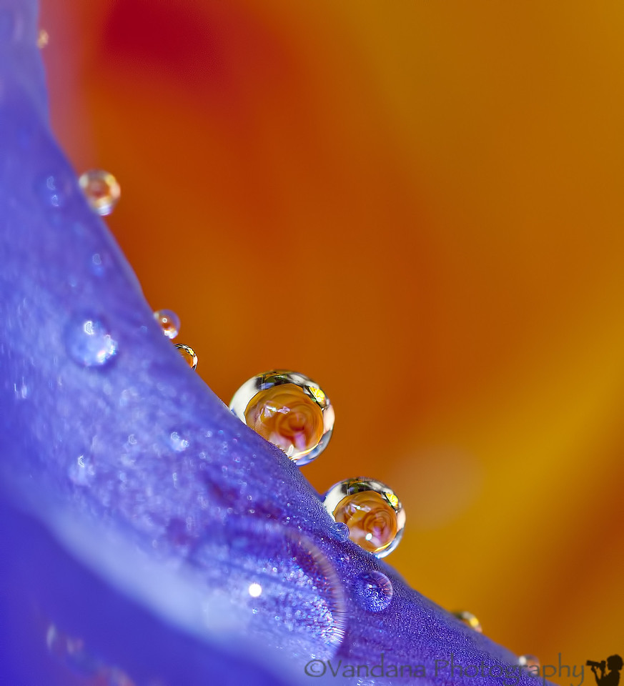 July 15, 2012 - drop refractions