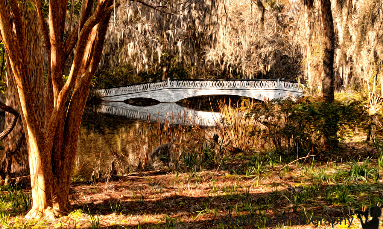 "January 18, 2012 - The white bridge at Magnolia Plantations, Charleston, SC - Remembering <a href=""http://www.ginger55.com/"">Ginger Jones</a>  I have never been to Charleston, South Carolina before this past weekend. Yet, I saw these places, esp the Magnolia plantation and Gardens with a sense of deja vu. I have seen these places thru the eyes of <a href=""http://www.ginger55.com/popular/80216408_iBQvt#!i=93376913&k=PR8P5"">Ginger</a> . I even have a photograph of  <a href=""http://www.ginger55.com/popular/80216408_iBQvt#!i=86972753&k=E3dGR"">this very bridge</a> hanging on my walls over the last few years. Ginger was a wonderful person, a daily photo community member and photographer back in 2006-07 when we were about 10-15 members. She would post daily pictures from Charleston, and her favorite Magnolia plantations 'for our pleasure', almost until the very end. She died in May 2007 of a rare and unexpected illness.  I never met Ginger, but photography brought us close. As I walked thru Magnolia plantations, I could almost see Ginger in the shadows, shooting, smiling, chatting up the birds. I will always miss her. May her soul rest in peace and may her photographs live forever. I hope you get to see some of her photos thru my links here.  PS: I used pixel bender for the first time here"