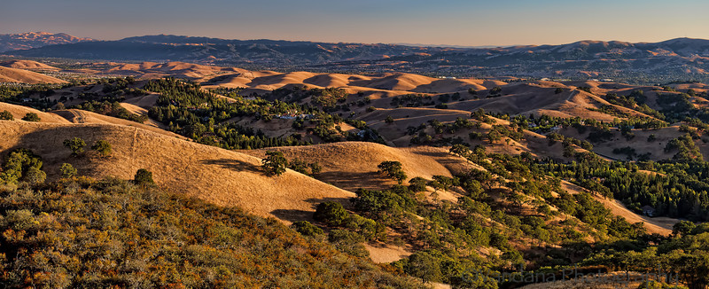 "September 4, 2012 - Mt.Diablo State Park - a brief trip over the weekend, we need much more time to explore the area !   Tuesday after the long weekend was a nightmarish day here in East Bay - <a href=""http://www.contracostatimes.com/news/ci_21485445/chp-officer-kenyon-youngstrom-is-our-hero"">Tragic shooting of a california highway patrol officer</a> on my road to work at 8.20am, the CHP officer subsequently died 2 days later. the shooting resulted in a day long investigation that closed I-680 N and south to and from Walnut creek. Stuck in traffic for almost 5-6hrs...such an insane shooting by a highly educated man( a masters in computer science !) for still unknown reasons.."