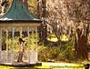 January 20, 2012 - Shooting at Magnolia Gardens ( pixel bender used !) - 26+ weeks pregnant V