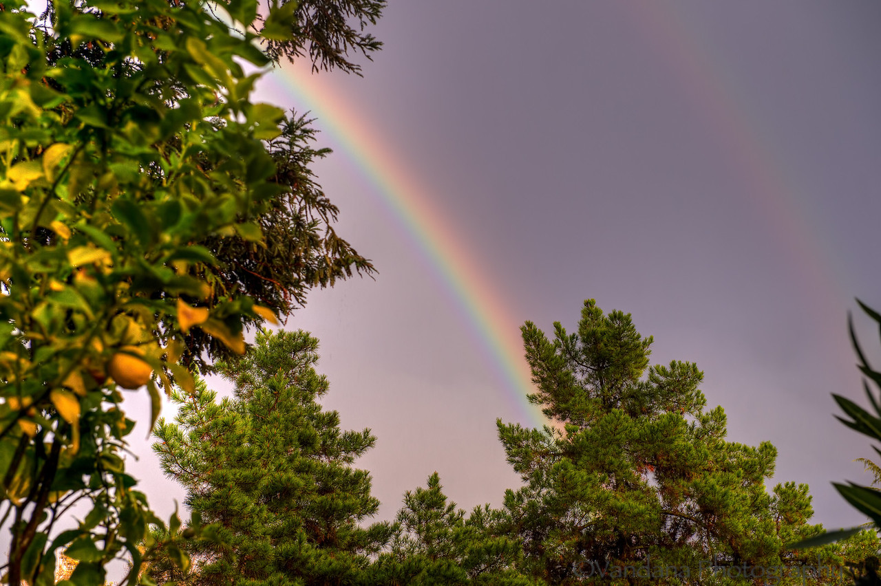 December 22, 2012 - a rainbow or 2 ! as seen from the backyard, very shortlasting..