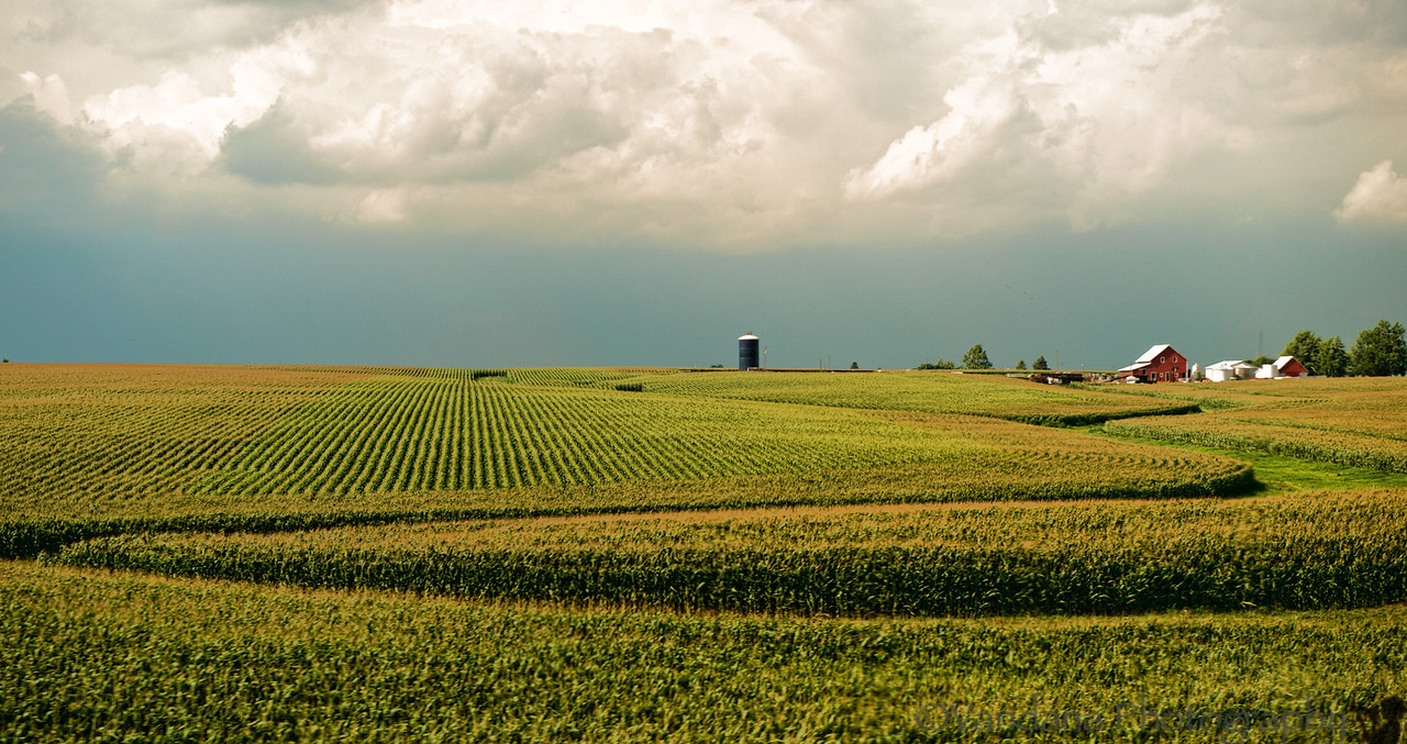 September 12, 2012 - the american farmland