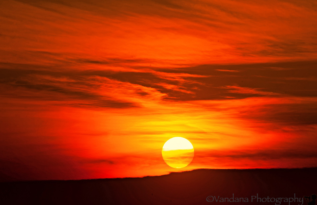 March 29, 2012 - a gorgeous sunrise to begin the day !