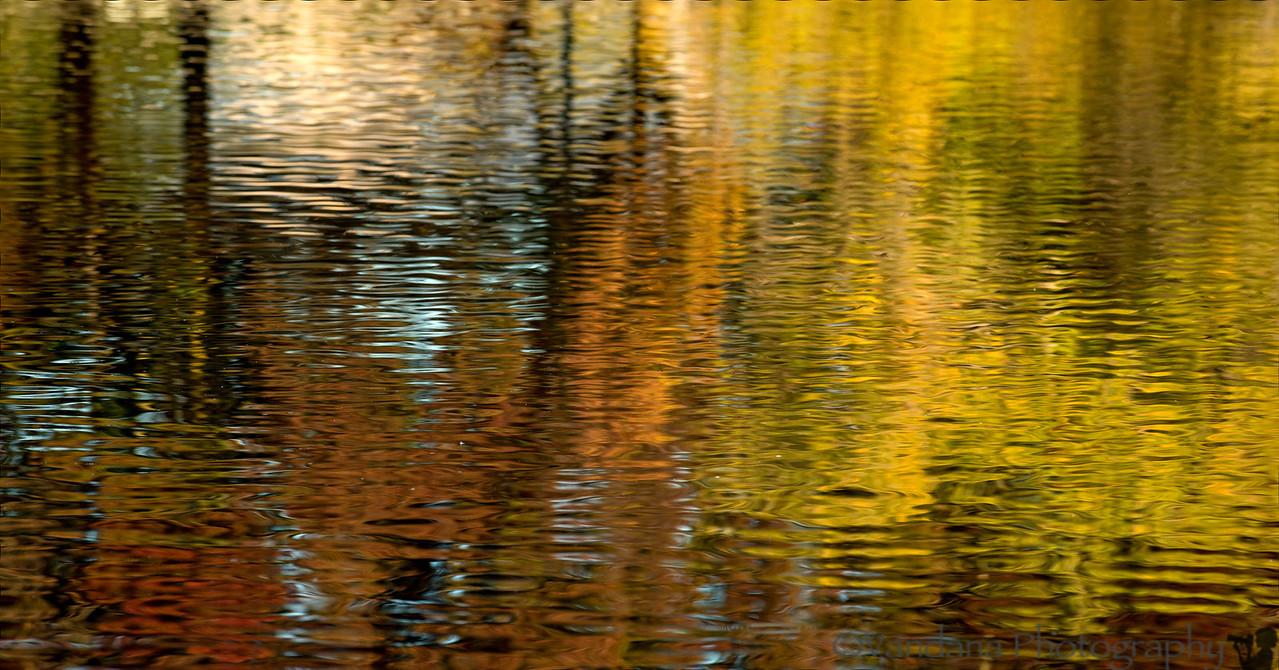 November 14, 2012 - Fall abstract