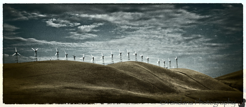 September 20, 2012 - blowing in the wind