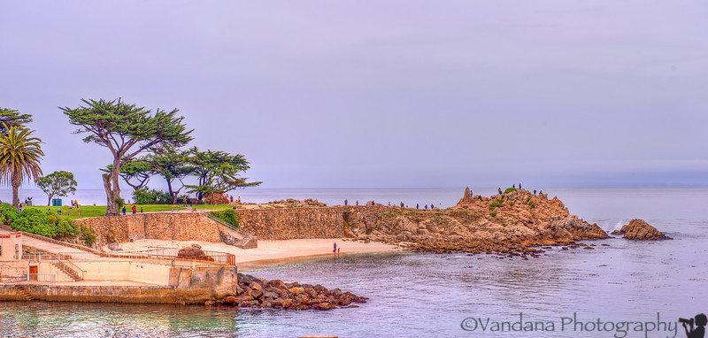 December 25, 2012 - a beach in Pacific Grove, CA