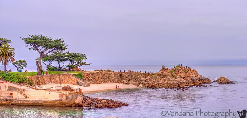 December 25, 2012 - a beach in Pacific Grove, CA