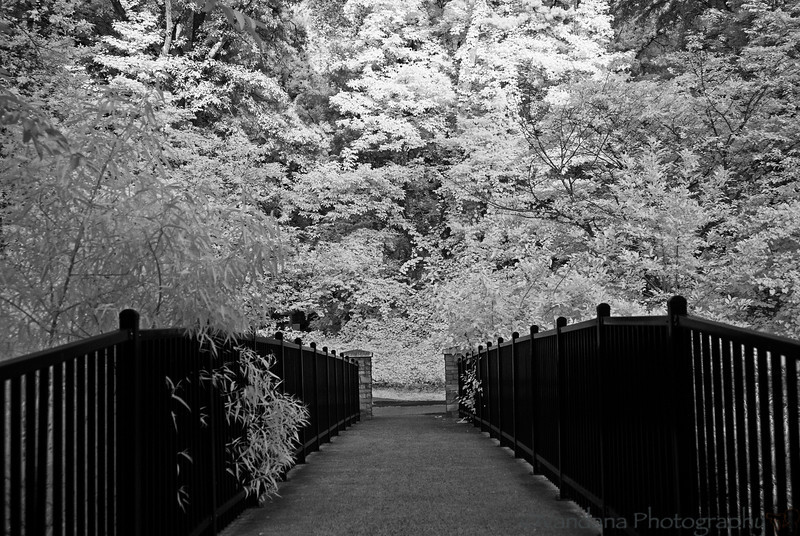 July 6, 2012 - On the infrared path again