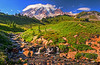 August 16, 2013 - Mt.Rainier from Paradise Meadows. <br /> <br /> Another beautiful day at Mt.Rainier National Park !