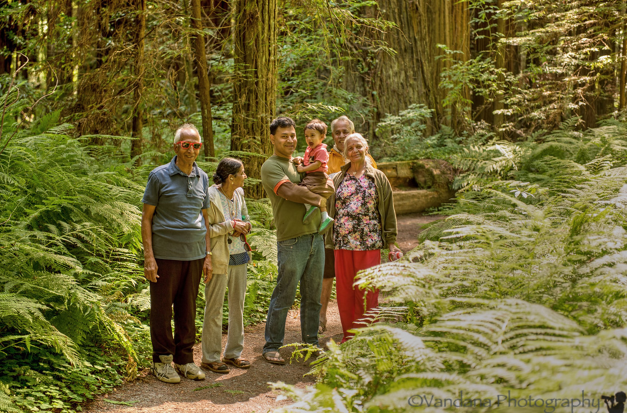 August 3, 2013- The family at Redwoods<br /> <br /> Missing the grandparents - all gone back to India :(