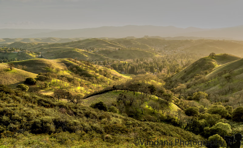 January 27, 2013 - the rolling hills at Mt.Diablo State Park<br /> <br /> Feel blessed to live less than an hour from this beautiful place !
