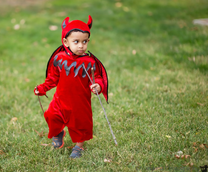 October 31, 2013 - The little devil at work <br /> <br /> Happy Halloween !