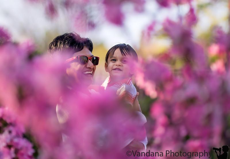 April 3, 2013 - Having fun with spring blossoms, at Heather Farm Park, Walnut Creek