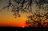 May 1, 2013 - Sunset silhouettes