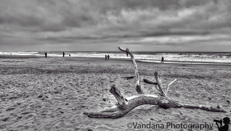 March 5, 2013 - Stormy beach