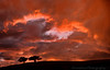 September 7, 2013 - a fiery sunset - taken from the moving car.