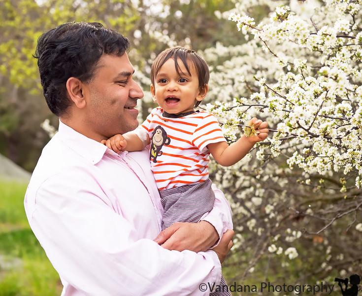 March 14, 2013 - Enjoying spring blossoms at Heather Farm Park, Walnut Creek