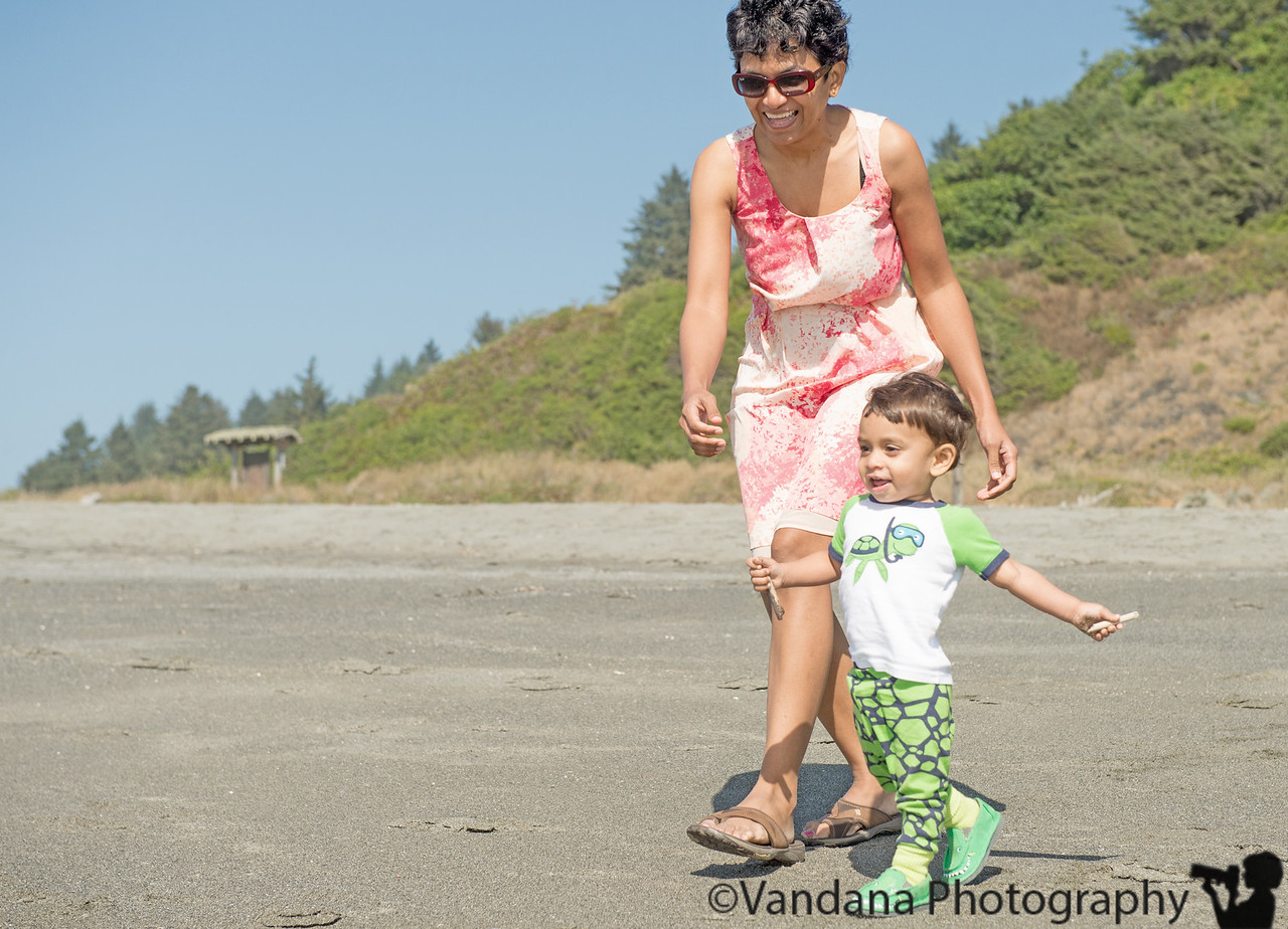 July 5, 2013 - The call of the ocean <br /> <br /> Arjun pleased with the waves, Redwood Creek Beach, Northern California